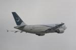 どりーむらいなーさんが、成田国際空港で撮影したパキスタン国際航空 A310-308の航空フォト(写真)