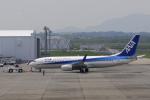 せせらぎさんが、静岡空港で撮影した全日空 737-881の航空フォト(写真)