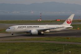 MOHICANさんが、関西国際空港で撮影した日本航空 787-8 Dreamlinerの航空フォト(写真)