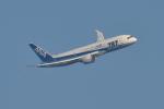 笹舟船頭さんが、長崎空港で撮影した全日空 787-8 Dreamlinerの航空フォト(写真)