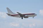 じゃまちゃんさんが、マッカラン国際空港で撮影したEG&G 737-66Nの航空フォト(写真)