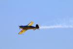 zero1さんが、岩国空港で撮影したWPコンペティション・アエロバティック・チーム EA-300Lの航空フォト(写真)