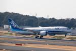 どりーむらいなーさんが、成田国際空港で撮影した全日空 787-8 Dreamlinerの航空フォト(写真)