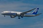 Simeonさんが、羽田空港で撮影した全日空 787-8 Dreamlinerの航空フォト(写真)