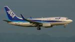 航空見聞録さんが、関西国際空港で撮影した全日空 737-781の航空フォト(写真)