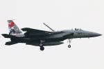 なごやんさんが、千歳基地で撮影した航空自衛隊 F-15J Eagleの航空フォト(写真)