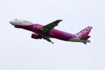 zero1さんが、関西国際空港で撮影したピーチ A320-214の航空フォト(写真)