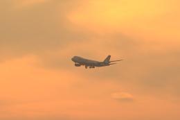 多楽さんが、成田国際空港で撮影した日本貨物航空 747-8KZF/SCDの航空フォト(写真)