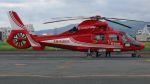 航空見聞録さんが、八尾空港で撮影した大阪市消防航空隊 AS365N3 Dauphin 2の航空フォト(写真)