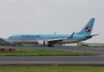 だいまる。さんが、岡山空港で撮影した大韓航空 737-8Q8の航空フォト(写真)