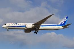 StarMarineさんが、成田国際空港で撮影した全日空 787-9の航空フォト(写真)