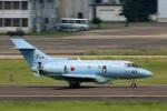 Wasawasa-isaoさんが、名古屋飛行場で撮影した航空自衛隊 U-125A (BAe-125-800SM)の航空フォト(写真)