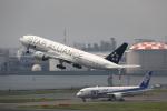 prado120さんが、羽田空港で撮影した全日空 777-281の航空フォト(写真)