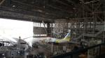 夏目月NatsumeTsukiさんが、羽田空港で撮影したAIR DO 737-781の航空フォト(写真)