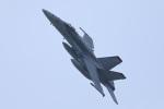 ハルモンさんが、茨城空港で撮影したアメリカ海兵隊 F/A-18C Hornetの航空フォト(写真)