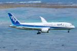 よっしぃさんが、新石垣空港で撮影した全日空 787-8 Dreamlinerの航空フォト(写真)