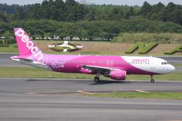 いっとくさんが、成田国際空港で撮影したピーチ A320-214の航空フォト(写真)