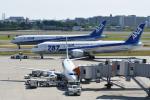 gucciyさんが、伊丹空港で撮影した全日空 787-8 Dreamlinerの航空フォト(写真)