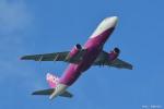 やまちゃんKさんが、那覇空港で撮影したピーチ A320-214の航空フォト(写真)