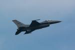 盆栽さんが、千歳基地で撮影したアメリカ空軍 F-16CM-50-CF Fighting Falconの航空フォト(写真)