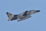 じゃまちゃんさんが、ネリス空軍基地で撮影したDRAKEN International A-4N Skyhawkの航空フォト(写真)