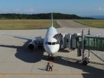 さゆりんごさんが、能登空港で撮影した全日空 A320-211の航空フォト(写真)