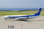 ShiShiMaRu83さんが、神戸空港で撮影した全日空 737-881の航空フォト(写真)
