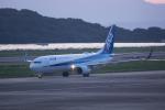 かずまっくすさんが、長崎空港で撮影した全日空 737-881の航空フォト(写真)