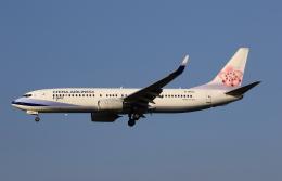 MOHICANさんが、福岡空港で撮影したチャイナエアライン 737-8Q8の航空フォト(写真)