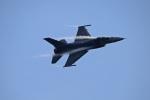 ペア ドゥさんが、千歳基地で撮影したアメリカ空軍 F-16CM-50-CF Fighting Falconの航空フォト(写真)