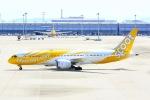shining star ✈さんが、関西国際空港で撮影したスクート 787-8 Dreamlinerの航空フォト(写真)