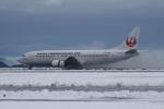 endress voyageさんが、岡山空港で撮影した日本トランスオーシャン航空 737-446の航空フォト(写真)