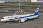 OS52さんが、羽田空港で撮影した全日空 787-8 Dreamlinerの航空フォト(写真)