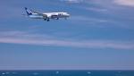 ji5islさんが、高知空港で撮影した全日空 787-8 Dreamlinerの航空フォト(写真)