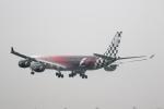 どりーむらいなーさんが、成田国際空港で撮影したエティハド航空 A340-642Xの航空フォト(写真)