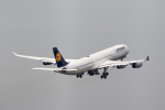 どりーむらいなーさんが、成田国際空港で撮影したルフトハンザドイツ航空 A340-313Xの航空フォト(写真)