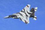 こびとさんさんが、新田原基地で撮影した航空自衛隊 F-15DJ Eagleの航空フォト(写真)