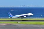 left eyeさんが、羽田空港で撮影した全日空 A320-211の航空フォト(写真)