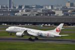 とりてつさんが、羽田空港で撮影した日本航空 787-8 Dreamlinerの航空フォト(写真)