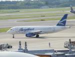 TUILANYAKSUさんが、成田国際空港で撮影したヤクティア・エア 100-95LRの航空フォト(写真)