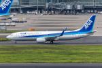Y-Kenzoさんが、羽田空港で撮影した全日空 737-881の航空フォト(写真)