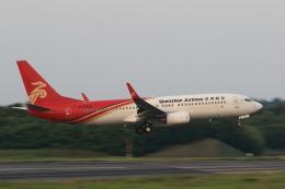 多楽さんが、成田国際空港で撮影した深圳航空 737-86Nの航空フォト(写真)