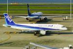 delawakaさんが、羽田空港で撮影した全日空 A320-211の航空フォト(写真)
