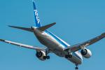 Simeonさんが、羽田空港で撮影した全日空 787-9の航空フォト(写真)