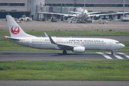 Tomo-Papaさんが、羽田空港で撮影した日本航空 737-846の航空フォト(写真)
