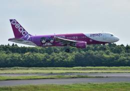 mojioさんが、成田国際空港で撮影したピーチ A320-214の航空フォト(写真)