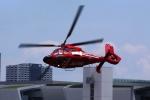 どらいすたーさんが、東京ヘリポートで撮影した東京消防庁航空隊 AS365N3 Dauphin 2の航空フォト(写真)