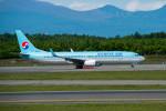 ポン太さんが、成田国際空港で撮影した大韓航空 737-9B5/ER の航空フォト(写真)