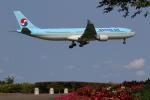 サトヤンさんが、成田国際空港で撮影した大韓航空 A330-323Xの航空フォト(写真)