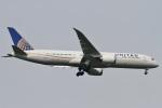 camelliaさんが、成田国際空港で撮影したユナイテッド航空 787-9の航空フォト(写真)